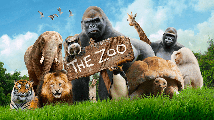 The Zoo Documentary TV Show Cinémoi